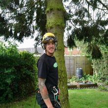 Simon The Tree Surgeon